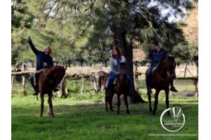 Experiencias Argentina          Eventos & Sentidos